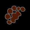Empreinte de Maine Coon polydactyle