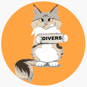 Divers Maine Coon